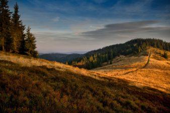 Gdzie najlepiej wypoczniesz w Beskidach?